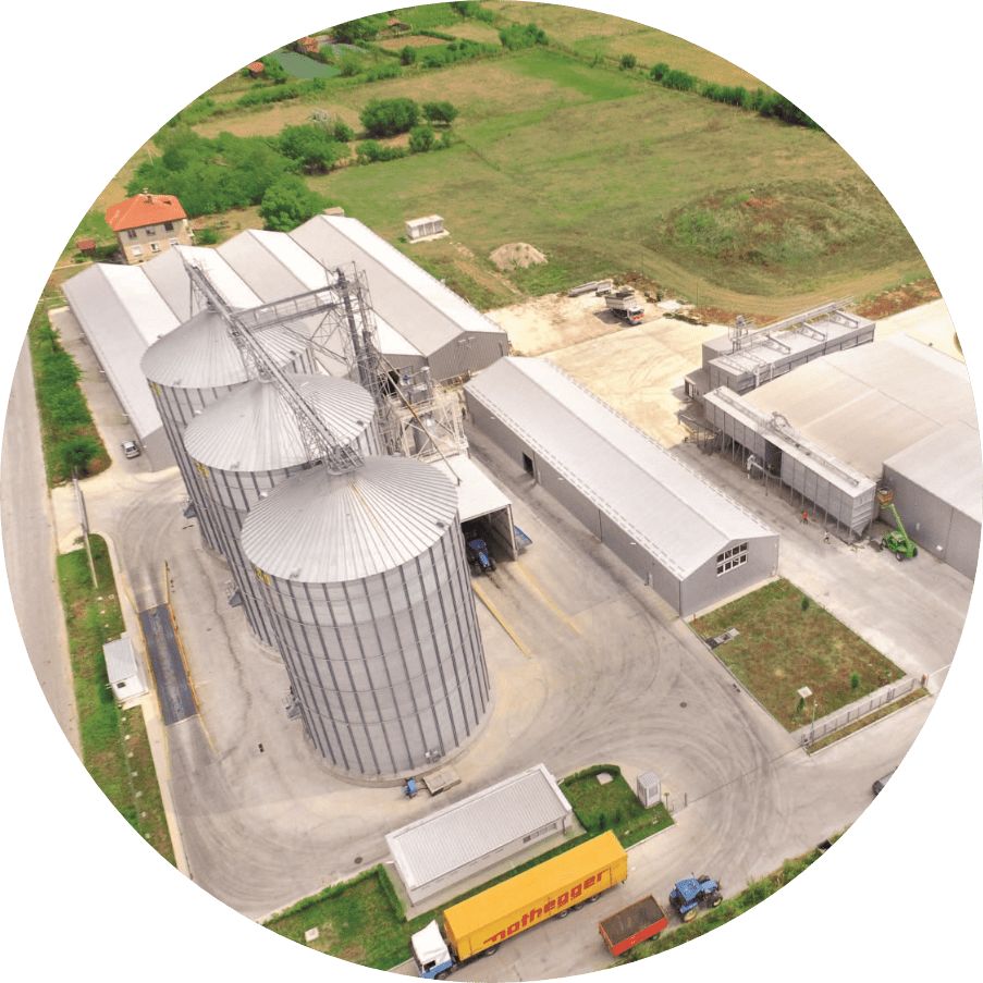 Sadina sunflower kernel factory 1